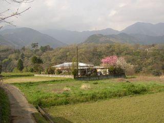 Kanagawapic