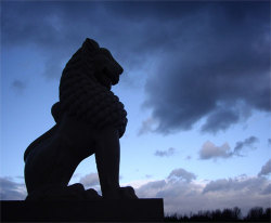 Lionbuddha